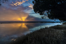 Blue Yellow Pink Orange And Purple Aqua Carnon-Plage Montpellier Sunset Above Water Southern France From Shore With Tree And Grass