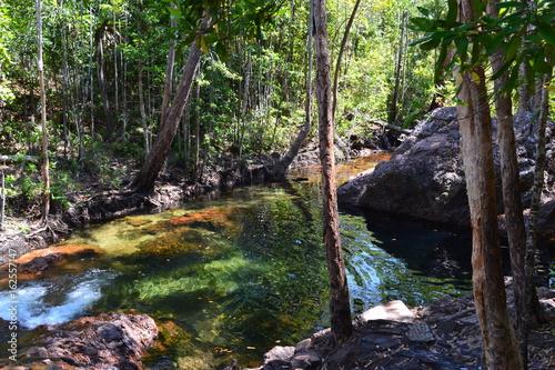 las-z-jeziorem-w-parku-narodowym-litchfield