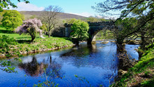 The River Wharfe At Bolton Abbey