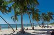 playa giron, Cuba – January 2, 2017: Tropical Beach view with people in Playa Giron, Cuba