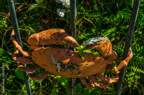 Fotografía  metal ornament on a balustrade in a seaside village, symbolic in the shape of a