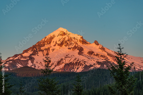 Mt Hood in the Alpenglow of Summer плакат