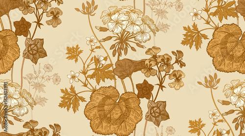 Flower geranium. Seamless floral pattern.