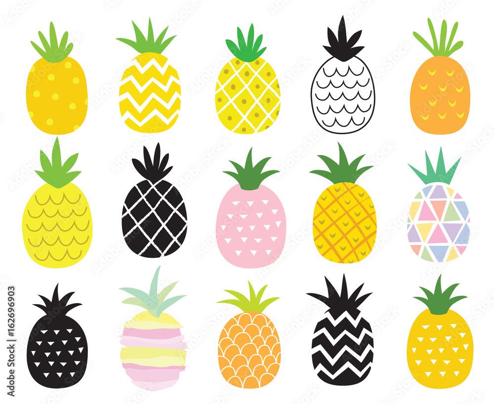 Fototapeta Vector illustration set of pineapple in different styles.