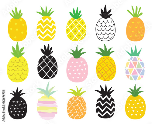 Photo Vector illustration set of pineapple in different styles.