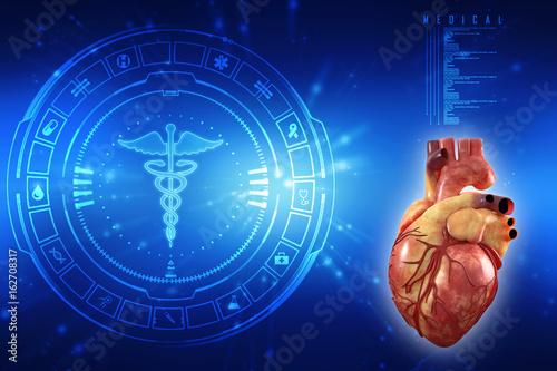 3d Anatomy of Human Heart – kaufen Sie diese Illustration und finden ...