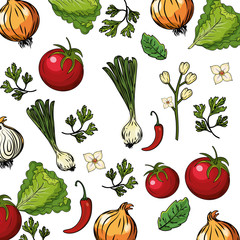 Fototapeta Przyprawy herbs and spices plants and organ food background