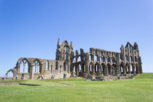 The Ancient Abbey At The North Of Yorkshire