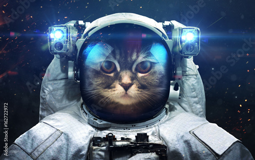 Fotobehang Kat Science fiction space wallpaper with cat astronaut, incredibly beautiful planets, galaxies, dark and cold beauty of endless universe. Elements of this image furnished by NASA