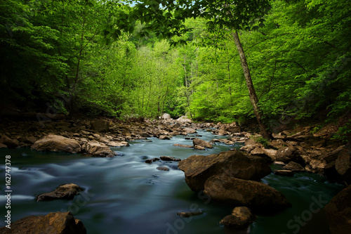 Cuadros en Lienzo Wilderness Virginia Creek