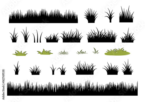 Obraz na plátně  grass silhouettes set - vector illustration