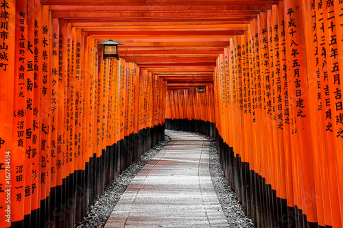 Gate to heaven, Kyoto, Japan Canvas Print