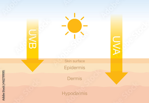 Obraz na plátne  The difference of radiation 2 types in sunlight which is harmful to the skin