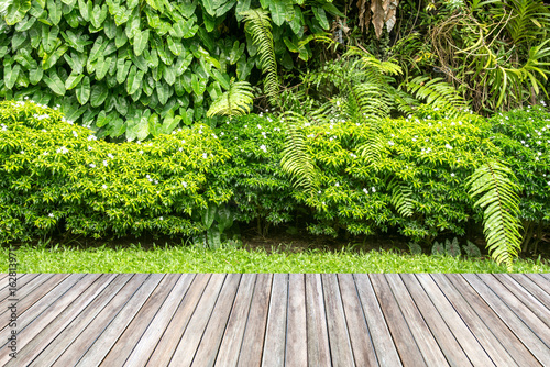 Fotobehang Tuin Wooden decking and plant garden decorative.