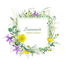 Summer Floral Greeting Card. Hand Drawn Vector Illustration Of Wildflowers On White Background.