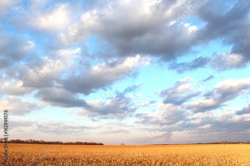 Photo sur Toile Bleu clair Rolling Sky