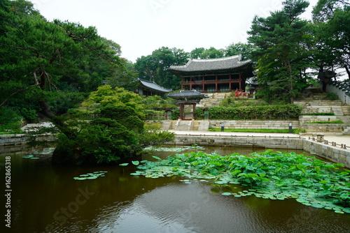 Keuken foto achterwand Seoel 창덕궁 후원 (Changdeokgung Secret Garden)