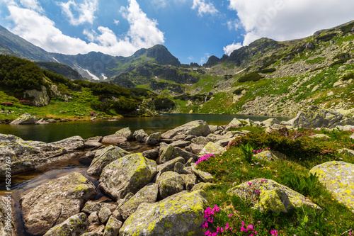 Fototapety, obrazy: Alpine summer scenery in the Romanian Alps, in summer