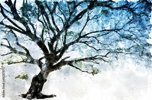 Drzewo, które ma wiele oddziałów, malowanie na białym tle