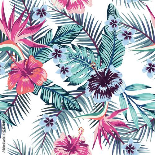 hibiskus-plumeria-opuszcza-bezszwowego-bialego-tlo