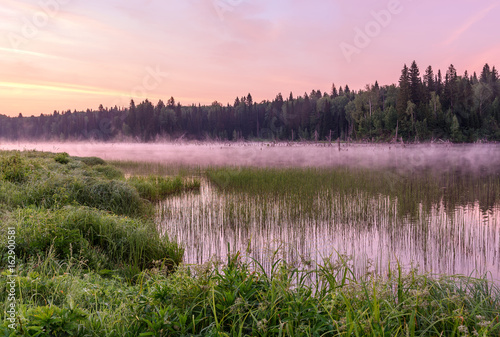 Fotobehang Purper lake dawn pink fog forest
