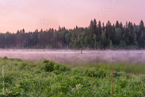 Poster Lichtroze lake dawn pink fog forest