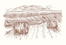 Rural Landscape Hand Drawn. Rolls Of Hay On Meadows. Village Sketch And Nature Retro Engraving Style Vector