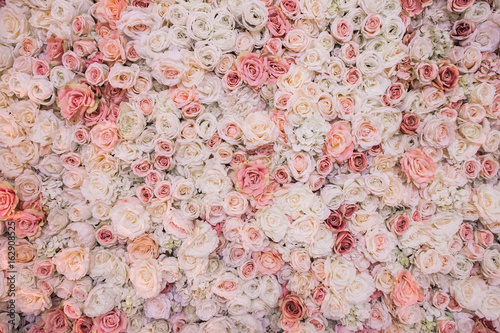 background of pink orange and peach roses beautiful flowers background for wedding scene buy this stock photo and explore similar images at adobe stock adobe stock background of pink orange and peach