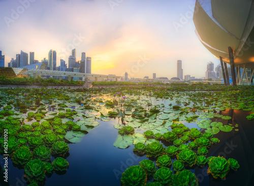 Photo  Singapore skyline background