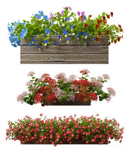 3d Rendering Of A Realistic Flower Pot Collection Isolated On White