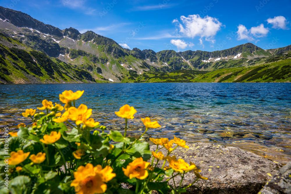 Fototapety, obrazy: Tatra mountains landscape, Europe, Poland