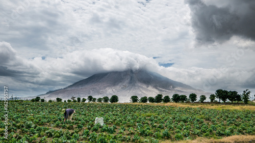 Staande foto Vulkaan SINABUNG VOLCANO, SUMATRA, INDONESIA - September 28, 2016: Woman farmer ignores the volcano eruption and continues her work. Eruption of Sinabung killed several people in recent years.