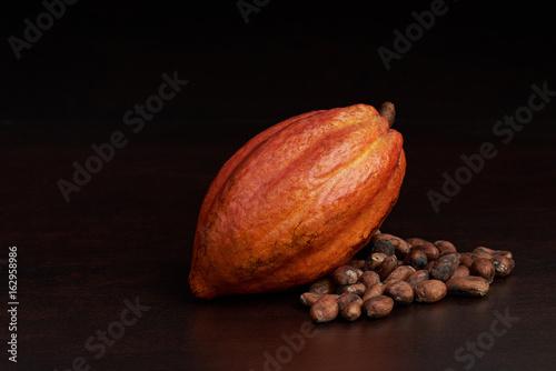 Fotografía  Organic raw cacao pod