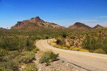 Blue Sky Copy Space And Winding Road Near Pinkley Peak In Organ Pipe Cactus National Monument In Ajo, Arizona, USA Including A Large Assortment Of Desert Plants, Which Is A Short Drive West Of Tucson.