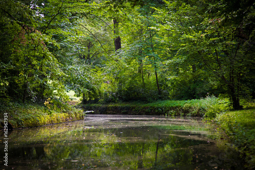 niewielka-klimatyczna-rzeka-plynaca-przez-las