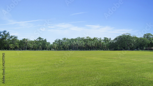 Foto op Plexiglas Landschappen the water lake with nature grassland with trees in the park, Ayutthaya, Thailand