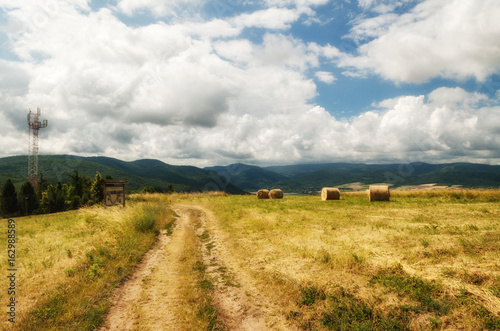 Deurstickers Honing Beautiful landscape of agricultural wheat field - Round bundles of dry grass in the field,bales of hay
