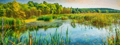 Fotografia Reed areas on lake. Modern oil painting illustration art