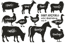 Vector Farm Animals Silhouettes. Vintage Illustrations. Hand Drawn Animals