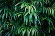 Jungle green leaves summer background in exotic tones