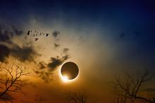 Total Solar Eclipse In Dark Re...