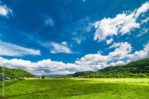 Tuinposter Natuur 北海道 大自然 牧場