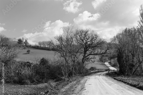 Black and white rural landscape with country road