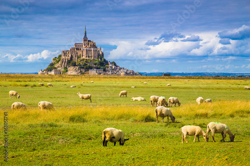 Fotobehang Schapen Le Mont Saint-Michel with sheep grazing on green meadows in summer, Normandy, France