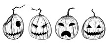 Halloween Pumpkin By Hand Drawing.Halloween Pumpkin Sketch Vector.Set Of Pumpkin In Halloween.Pumpkin Paint On White Background.