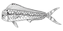 Dorado Mahi Mahi Fish Zentangle And Stippled Stylized Vector Illustration. Pattern. Zen Art. Black And White Illustration On White Background. Adult Anti-stress Coloring Book.
