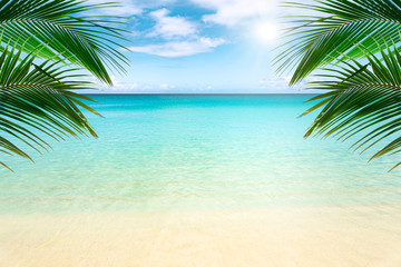 Fototapeta Popularne Sunny tropical beach with palm trees