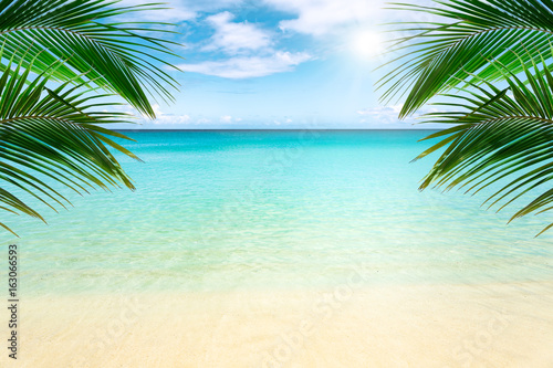 Foto op Aluminium Tropical strand Sunny tropical beach with palm trees