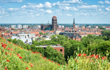 Gdansk city panorama in summer scenery