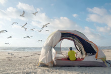 A Teenager In A Tent On The Shores Of The Gulf Of Mexico Looks At Flying Seagulls. Padre Island National Seashore, Texas, United States